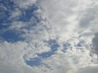 DSC01989.JPGのサムネール画像